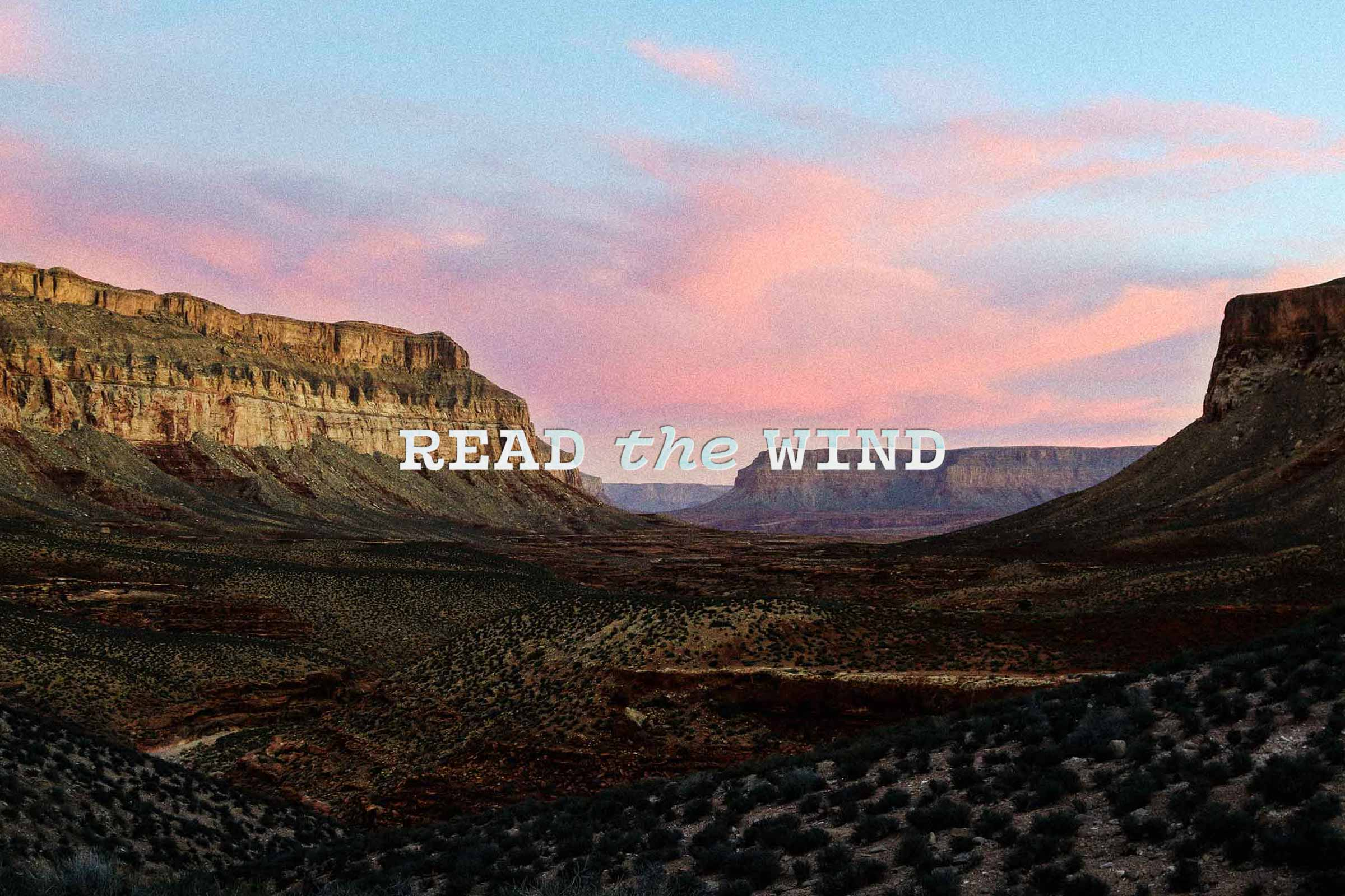 LB-Read-the-Wind